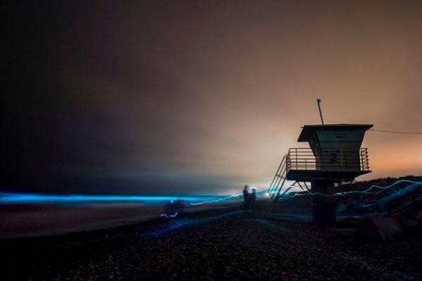 Светящийся океан вКалифорнии сняли накамеры