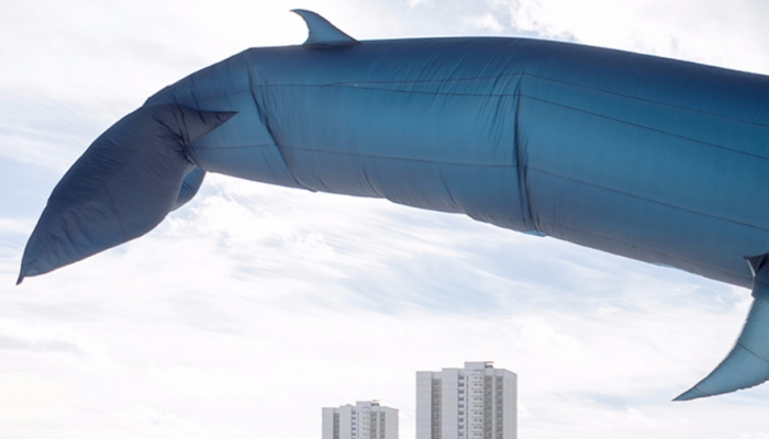 В «Царицыно» появится 30-метровый воздушный кит