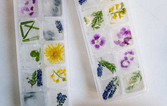 blue-and-white-floral-plastic-tray-4686937